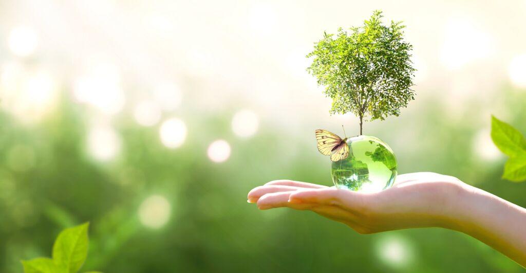 Nachhaltige Finanzplanung und Investment